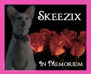 Skeezix