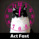 ActFast