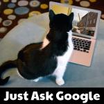 JustAskGoogle